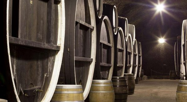 Ilok Cellars – The Symbol of Croatian Wine Tradition