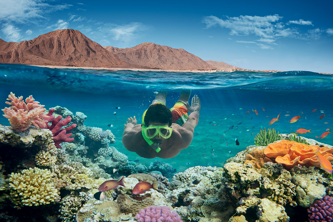 Dive in Sharm El Sheikh